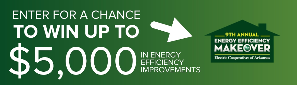 Energy Efficiency Makeover Contest
