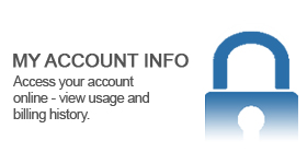 My Account Info